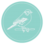 LOGO: Savannah Sparrow outlined in white on turquoise background
