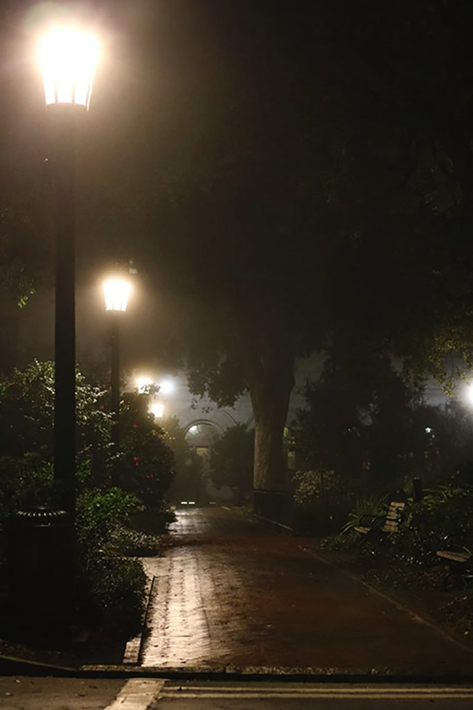 Dimly lit park with brick sidewalks and lampposts illuminating the mist