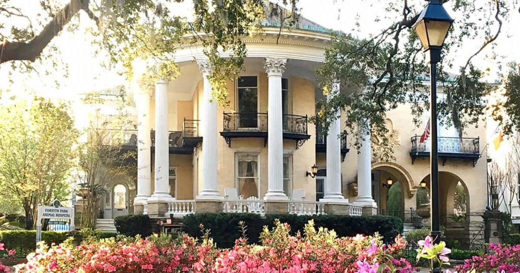 Best Season to Visit Savannah GA thumbnail image showing a yellow mansion bathed in sunlight with pink azaleas and Southern live oaks in the foreground