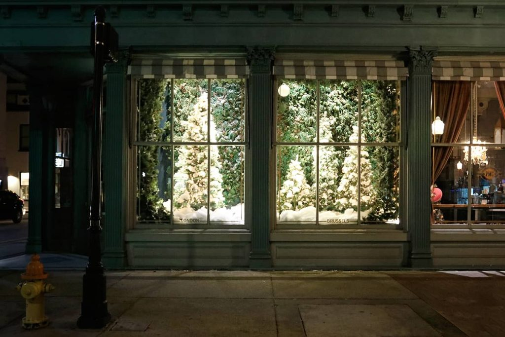 Green storefront of The Paris Market in Savannah with elegant flocked Christmas trees in the window