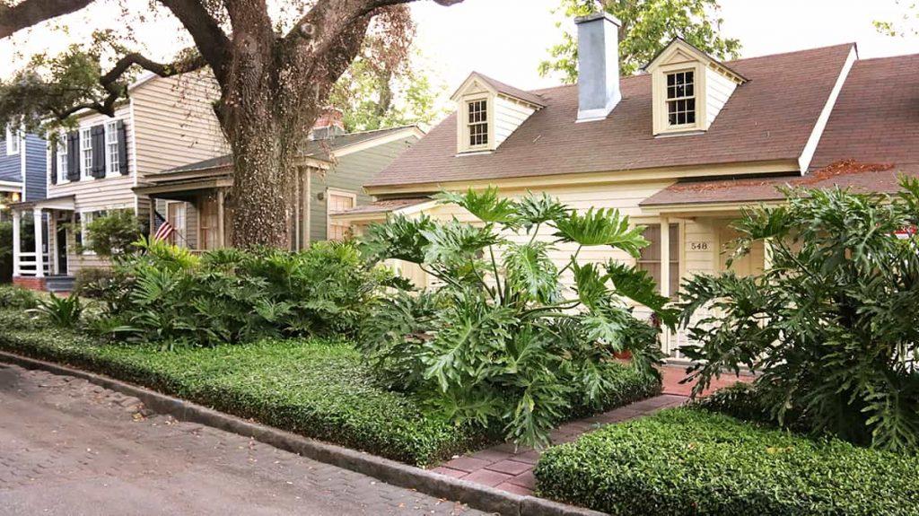 Neatly landscaped green space on Jones Street in Savannah