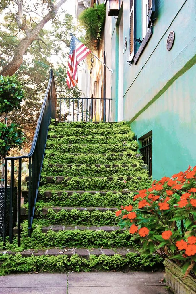 Stairs covered in bright green moss with an American flag hanging over the doorway