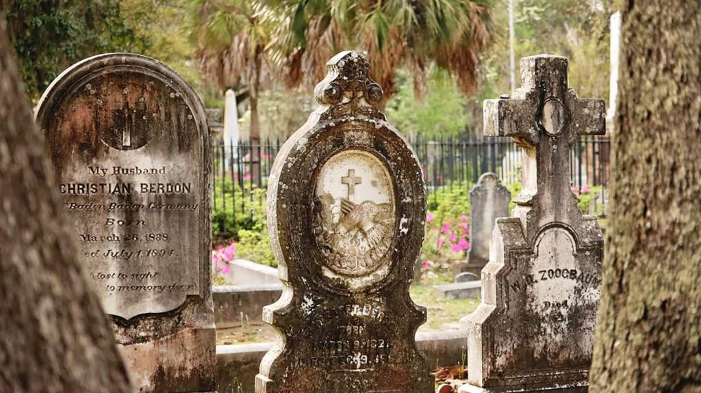 Tree trunks in the foreground with three elaborate old headstones in the background