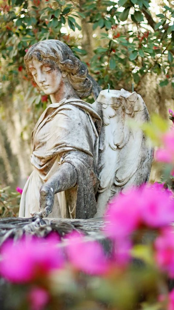 Statue of an angel in Bonaventure Cemetery surrounded by pink azaleas and beautiful trees