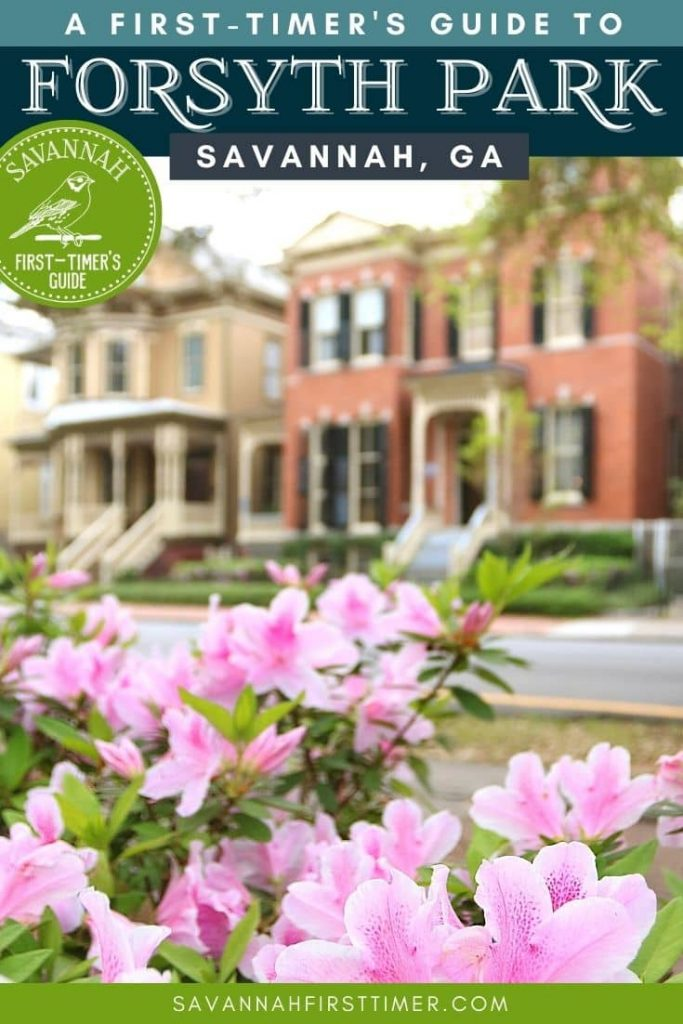 Pinnable graphic of pink azaleas with historic homes in the background and text overlay that reads A First-Timer's Guide to Forsyth Park
