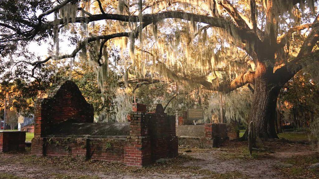 A massive oak with sunlight illuminating Spanish moss and timeworn old headstones beneath it