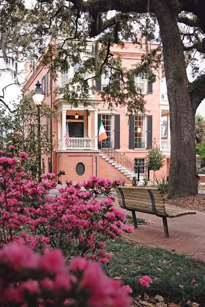 View of 432 Abercorn Street through hot pin azalea bushes in Calhoun Square. The home is a 3-story salmon-colored plaster structure with black shutters and white trim